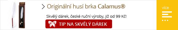 calamus.cz